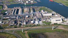 BASF, grup şirketlerini birleştirdi
