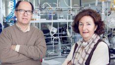 Biyo- yapay pankreasta önemli adım