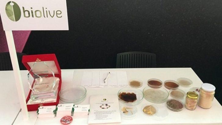 Türk girişimciler zeytin çekirdeğinden biyoplastik üretti