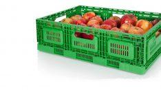 Yaş meyve ve sebzelerin plastik kasalarda taşınması zorunlu olacak