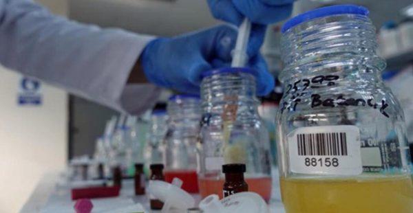 Kimya ihracatı 8 ayda 11,5 milyar dolara ulaştı