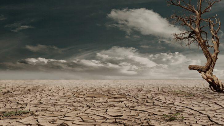 İklim değişikliği dünya üzerindeki yaşam için en büyük tehdit